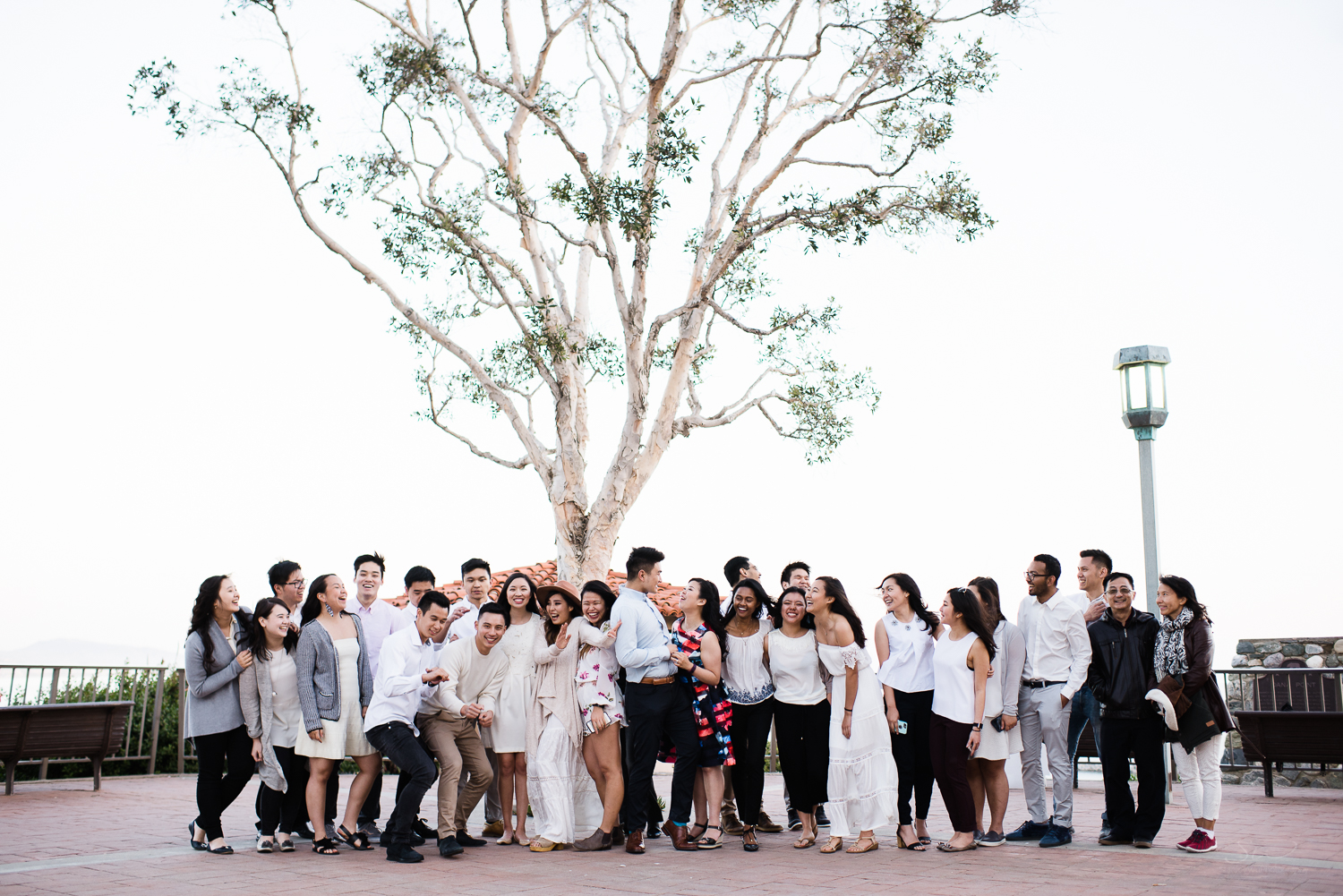Big group photo. Cliffside proposal & engagement in Dana Point | Stanley Wu Photography Portrait & Wedding Photographer | Los Angeles, Orange County, Southern California