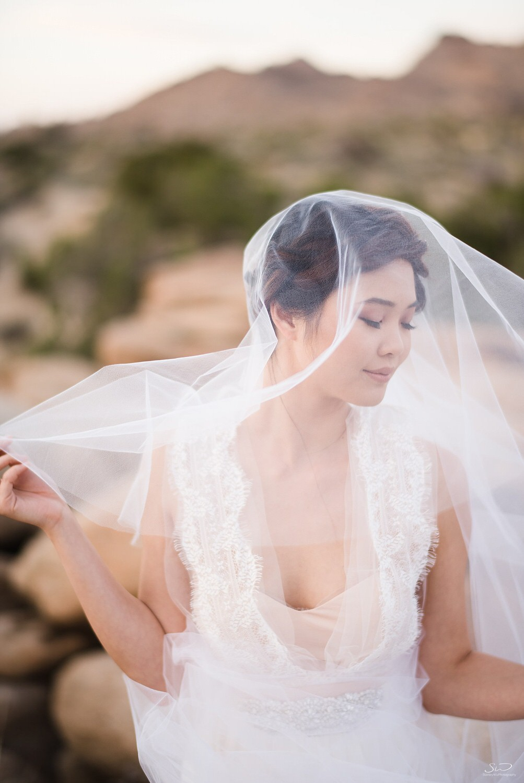 Bridal desert portrait | Joshua Tree Desert Wedding, Engagement, Elopement, Adventure Inspiration