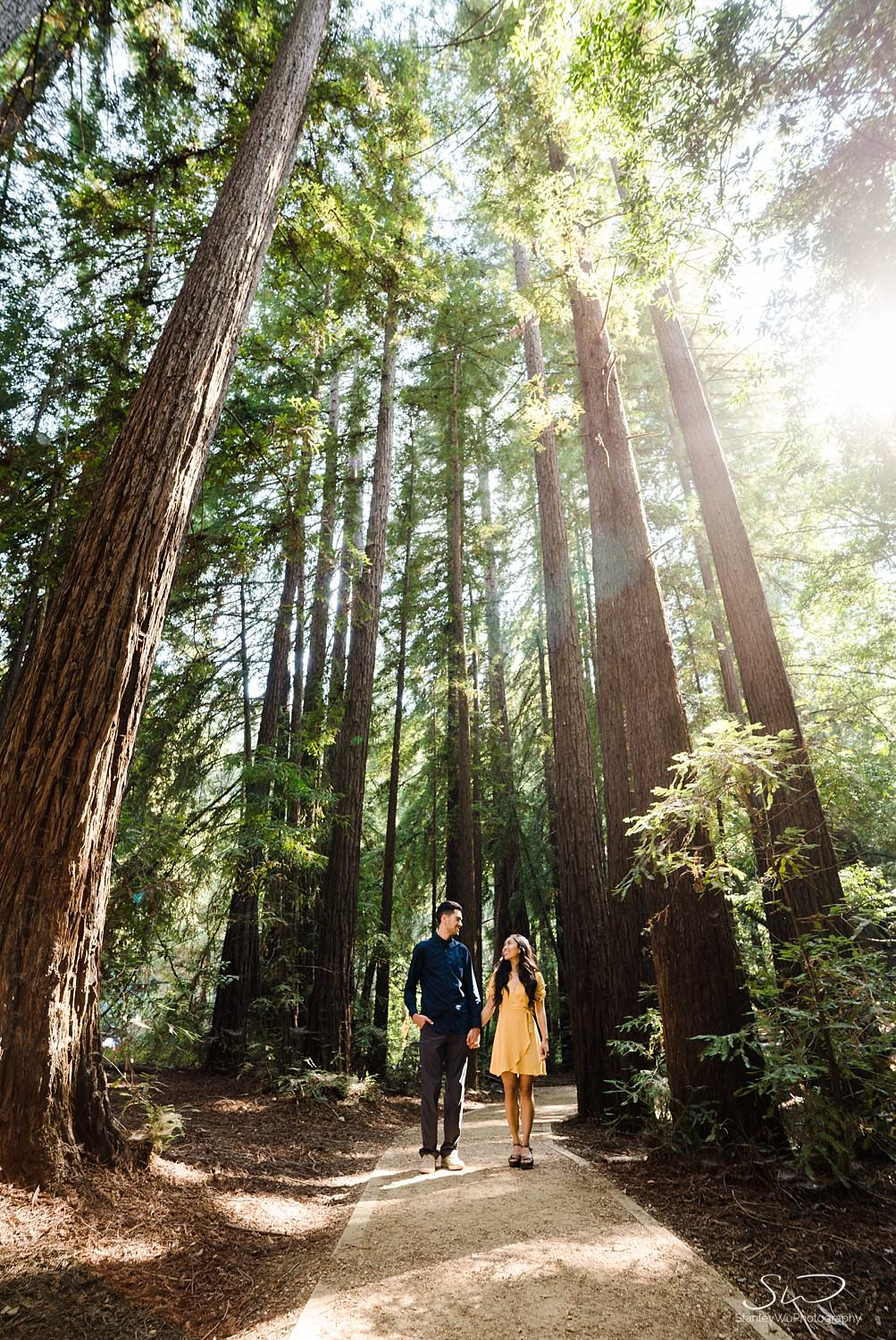 big-sur-travel-adventure-engagement-session_0016.jpg
