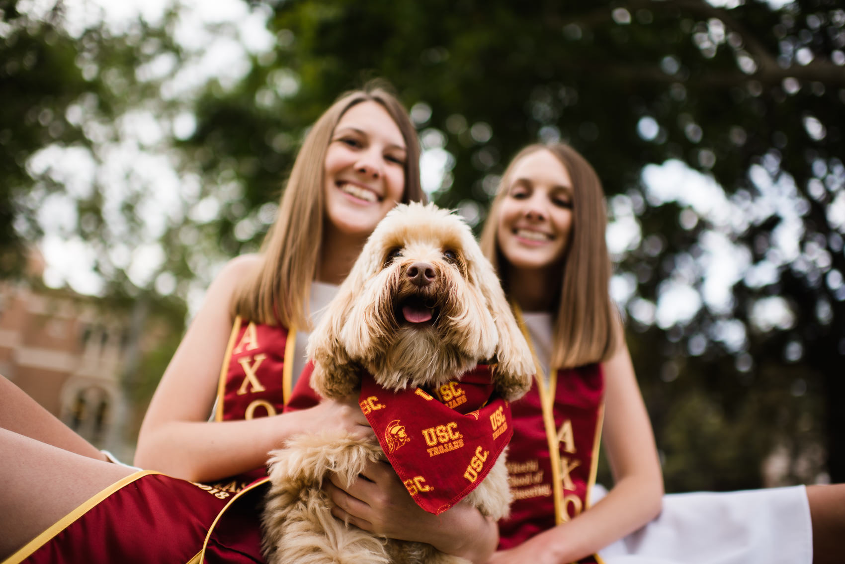 portrait of a dog wearing collegiate apparel with two graduating seniors at usc