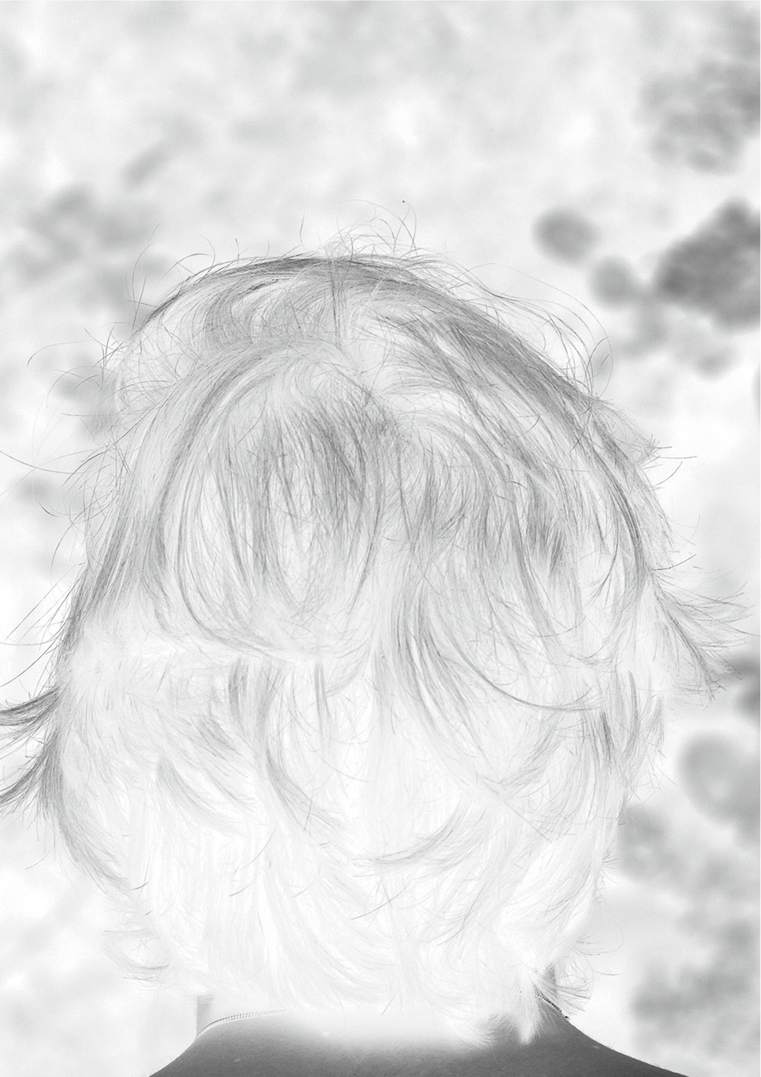 visuelCQQVBLL.jpg