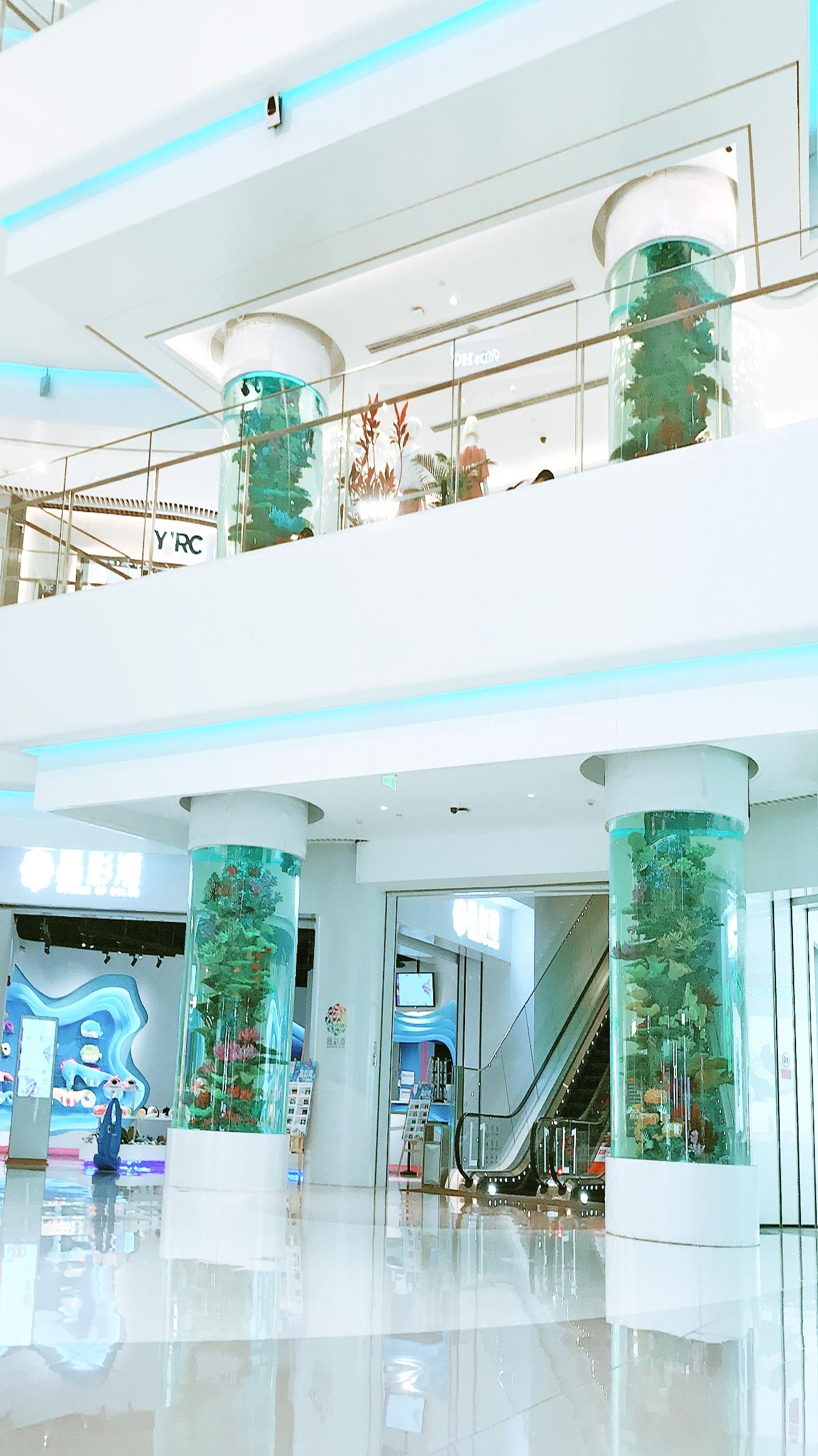 Cylinder Aquariums 5