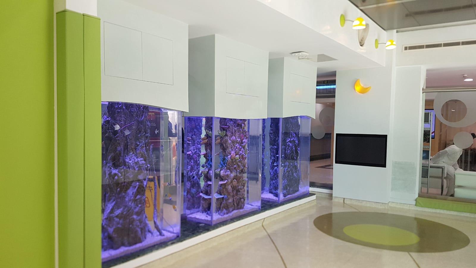 Kuwait Acrylic Aquariums.jpeg