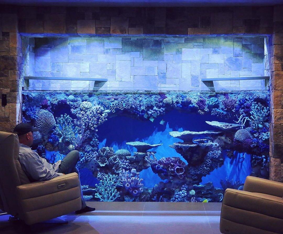 Guide To Incorporating Aquariums Into Interior Design Redfin Aquarium Design