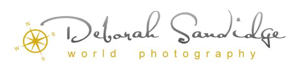 deborah sandidge logo