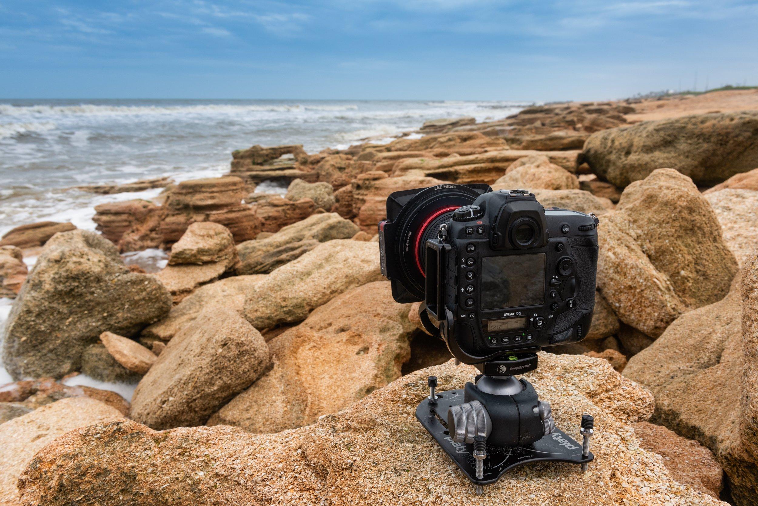 platypod on a rock