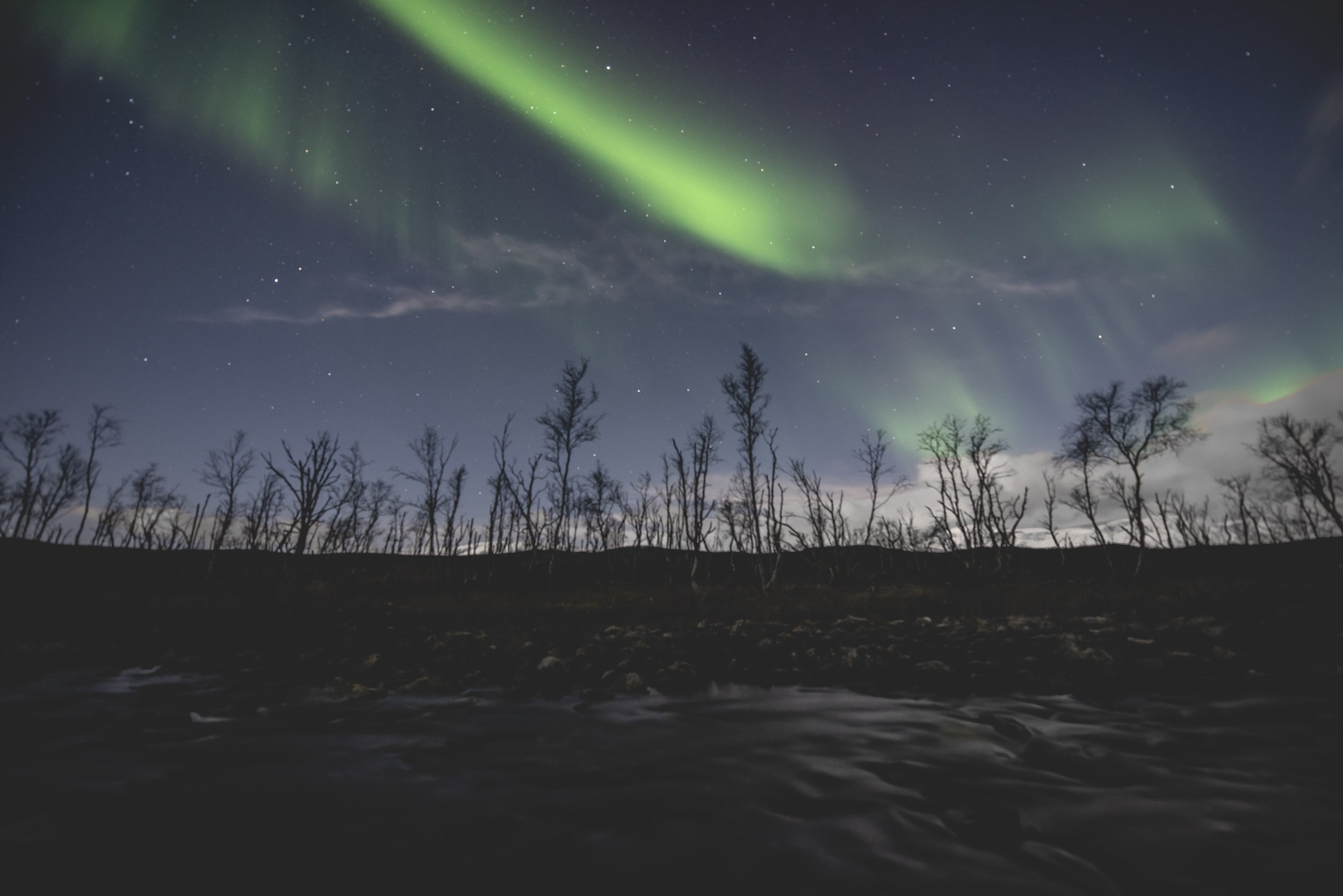 Trees in foreground northern lights long exposure 2