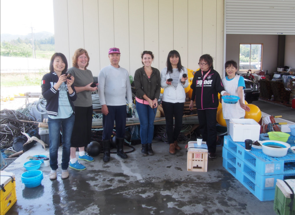 Manage Interns - Volunteer Activity