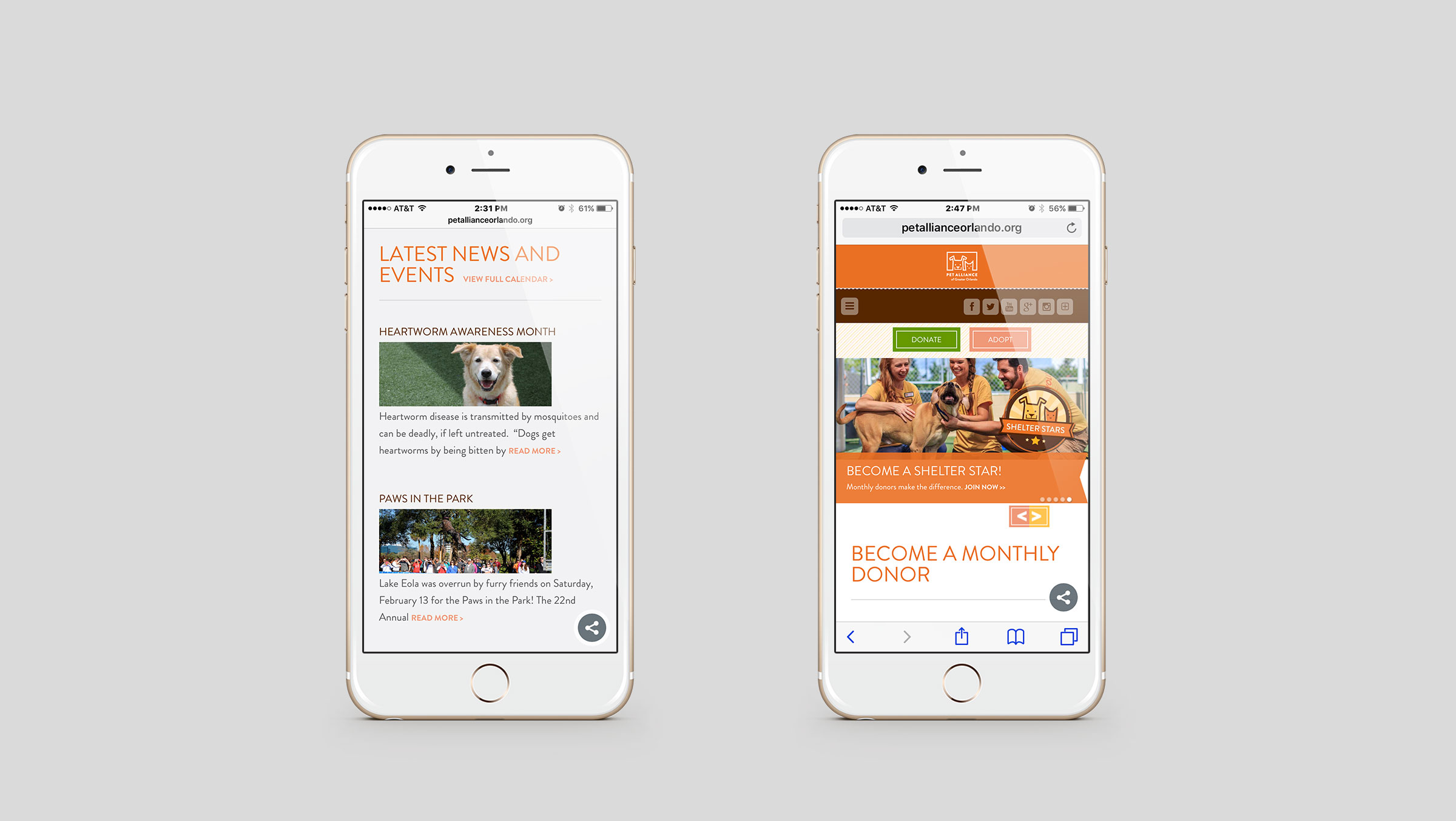 Pet Alliance of Greater Orlando Mobile Site