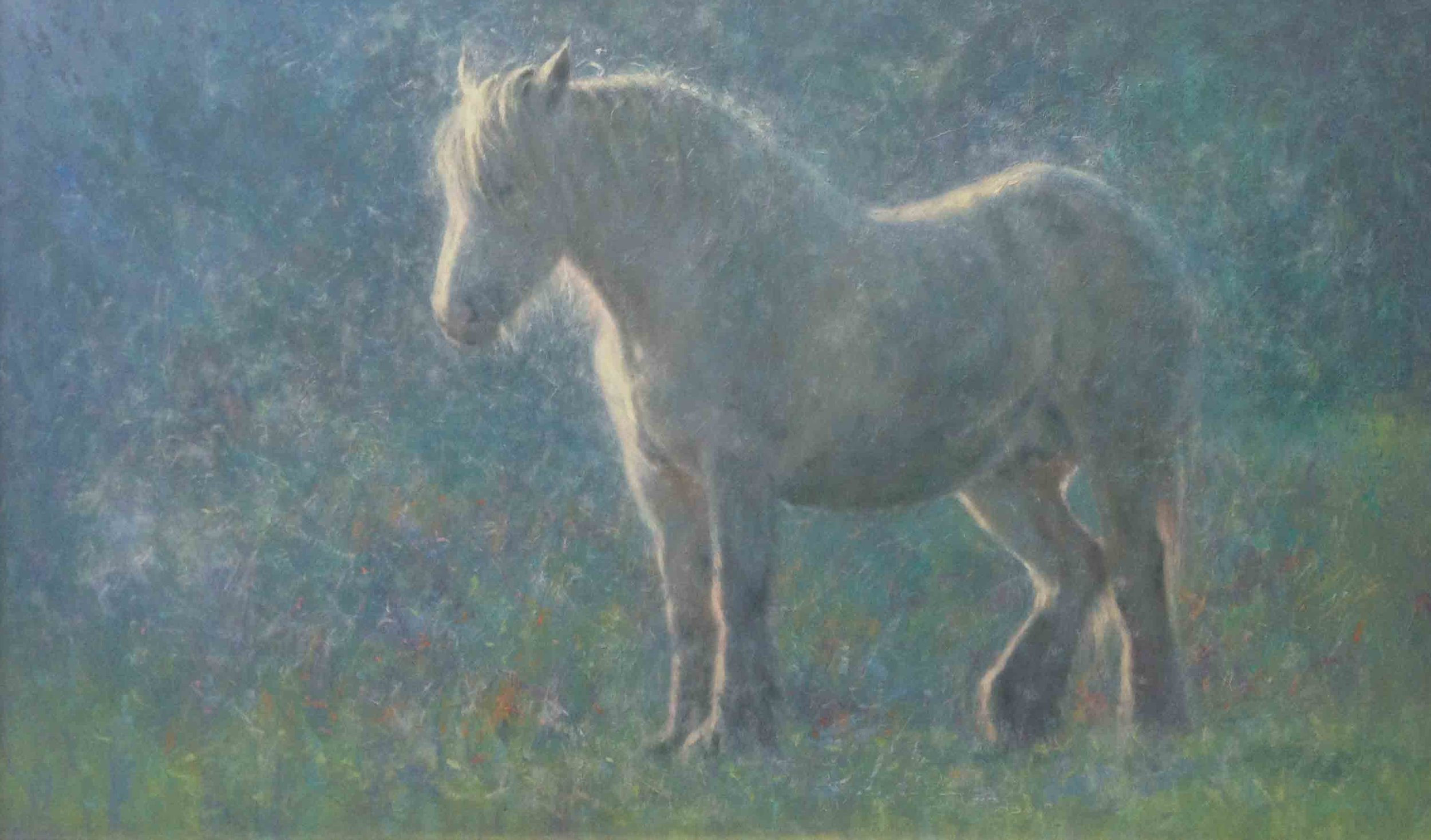 """Snow Horse""                                Oil on Canvas                       22 ins x 36 ins"
