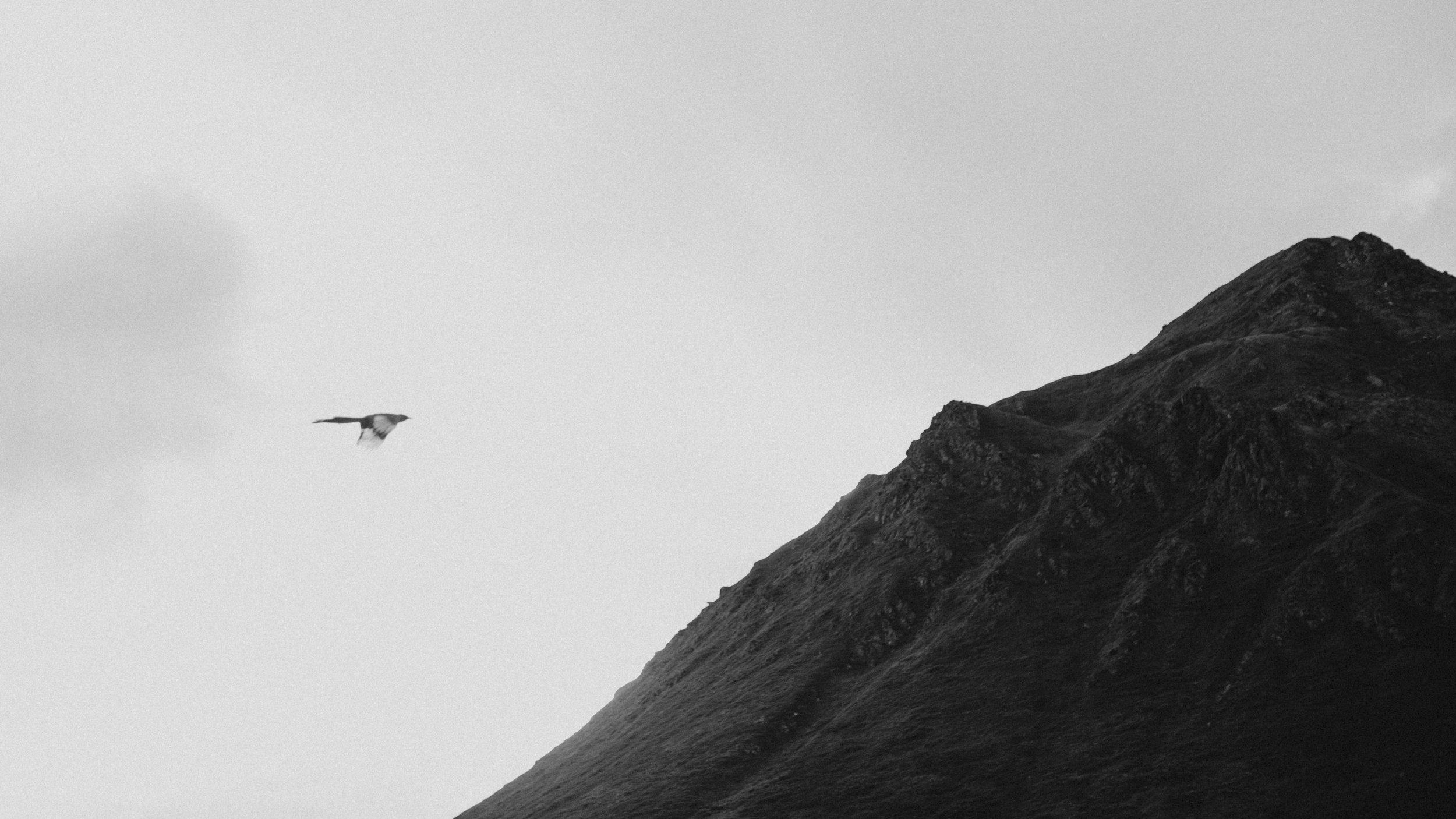 ariel-lynn-alaska-elopement-mountain-inspiration-18.jpg