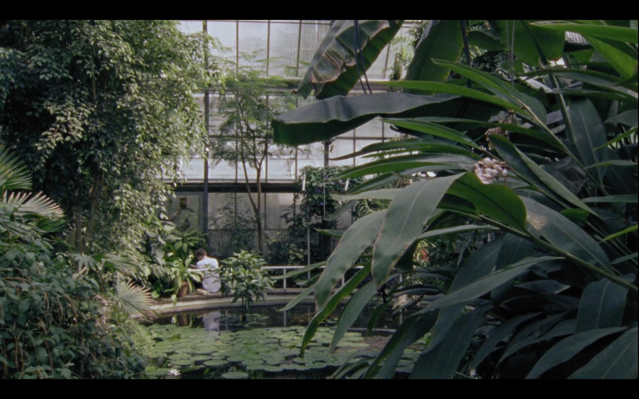 botanicka zahrada .jpg