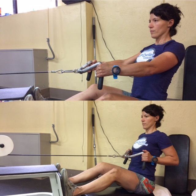 Seated Mid-Row: Same as above but weighted