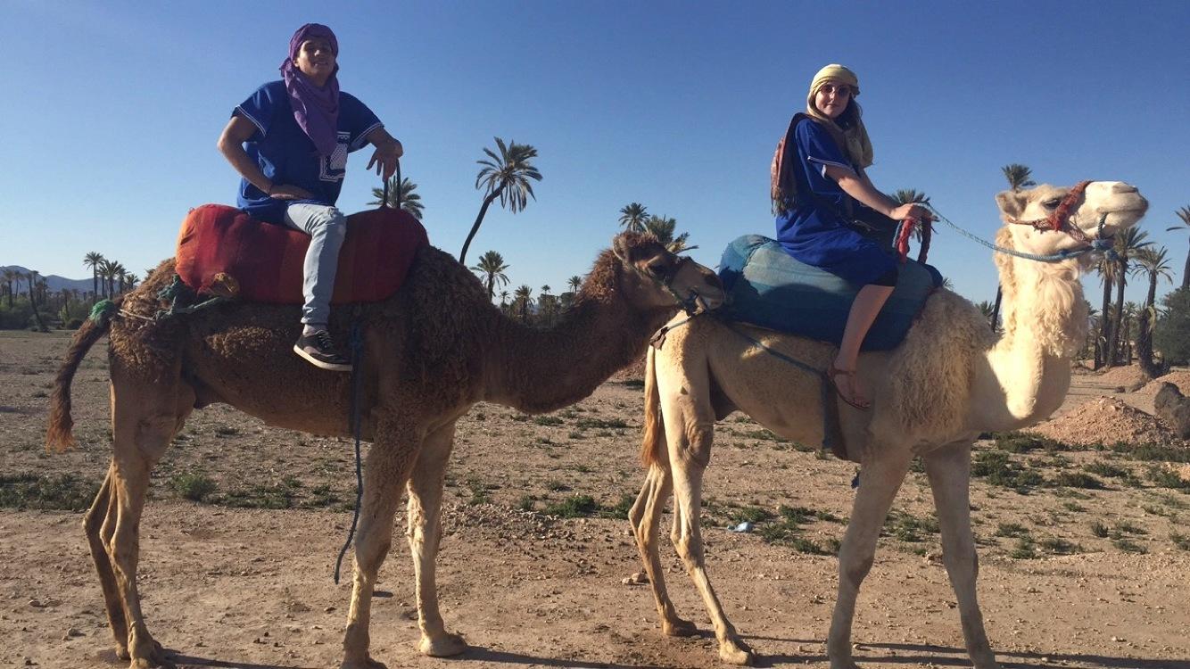 Riding Camels beyond the Medina