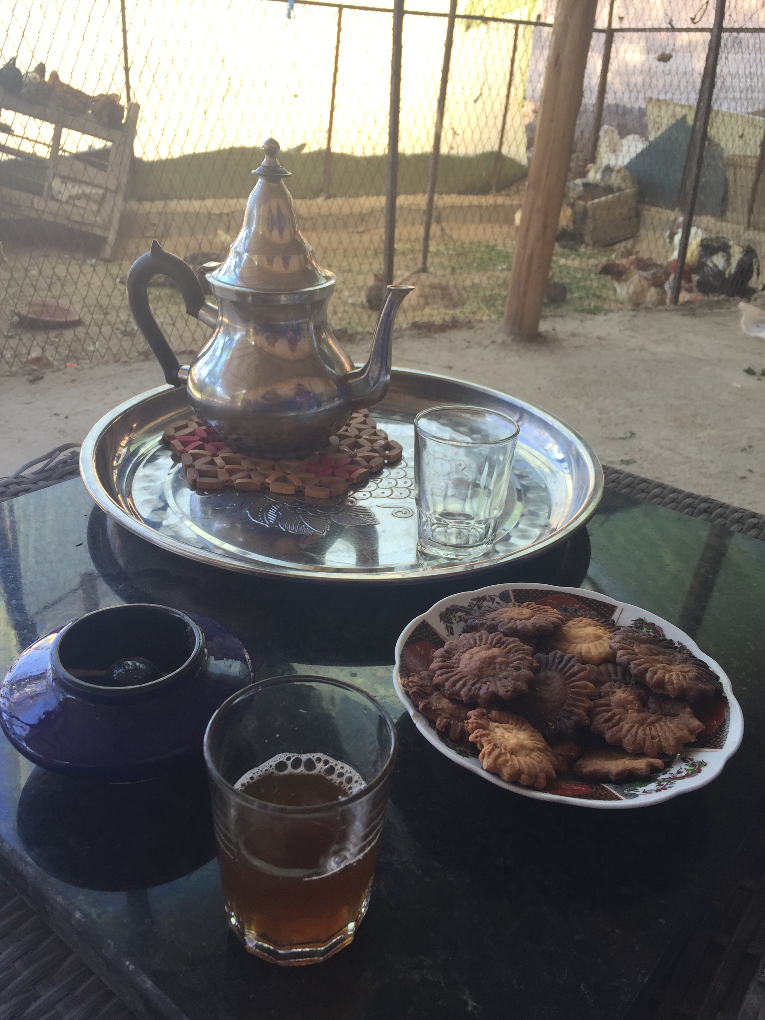 Mint tea at a berber's home! and cookies!