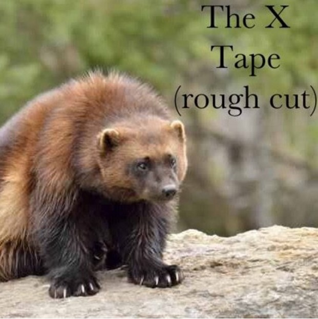 Listen to Got It by XXHAPO.