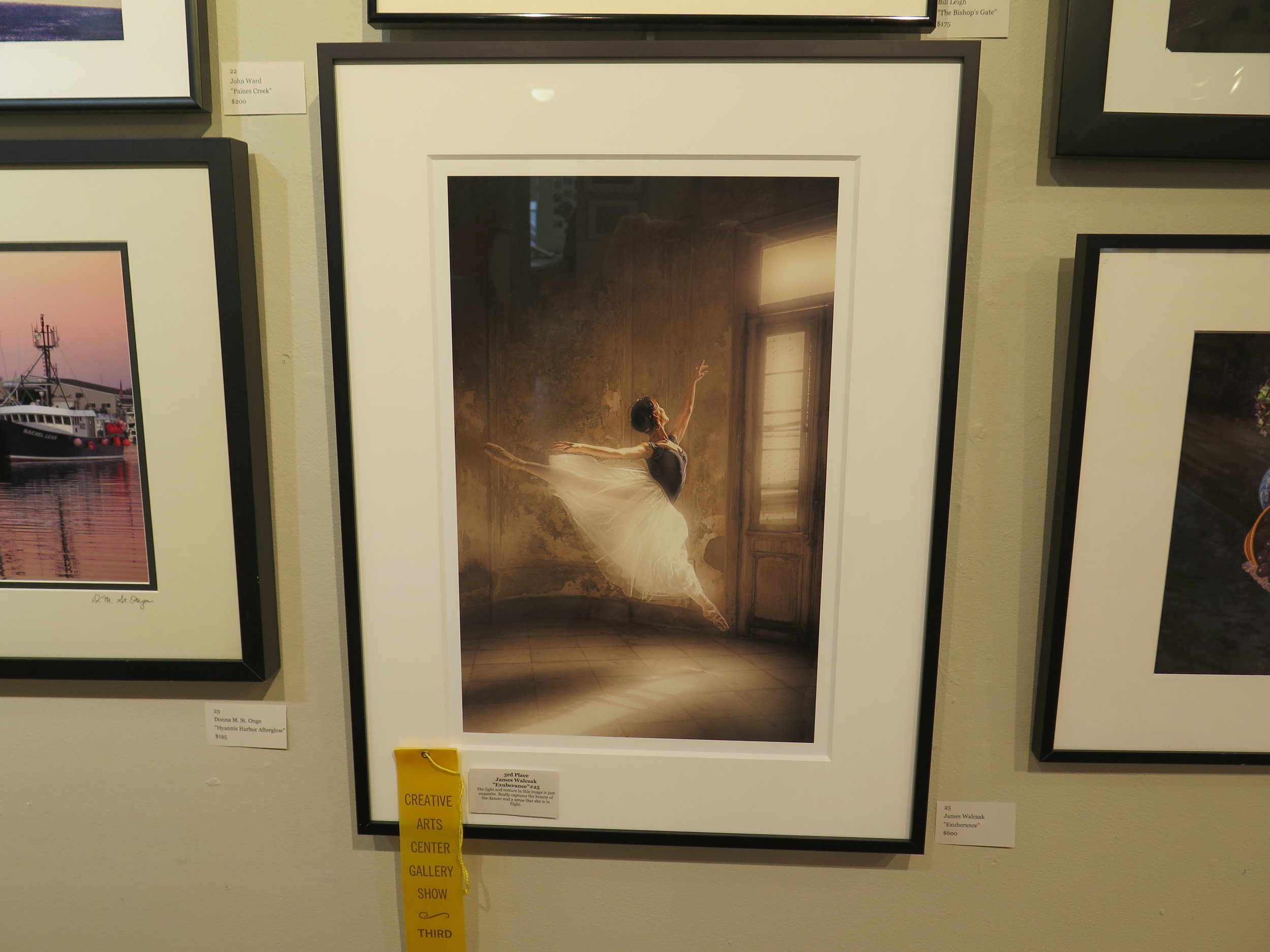 "3rd Place  James Walczak  ""Exuberance"""