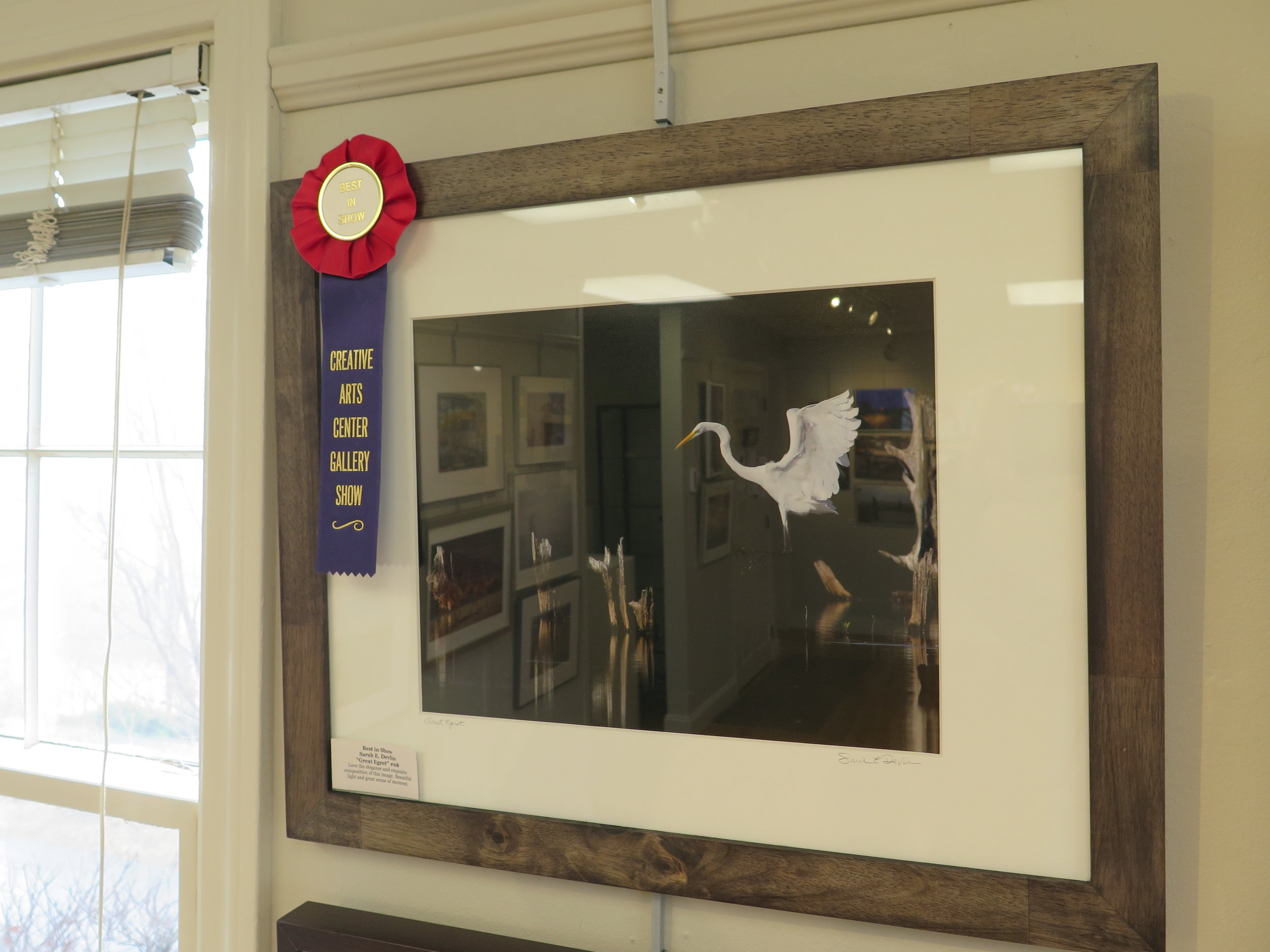 "Best in Show Sarah E. Devlin ""Great Egret"""