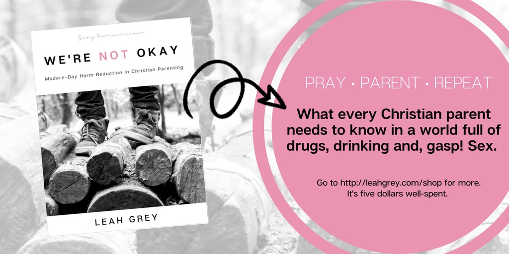 Christian Parenting Book for Parents with Troubled Teens