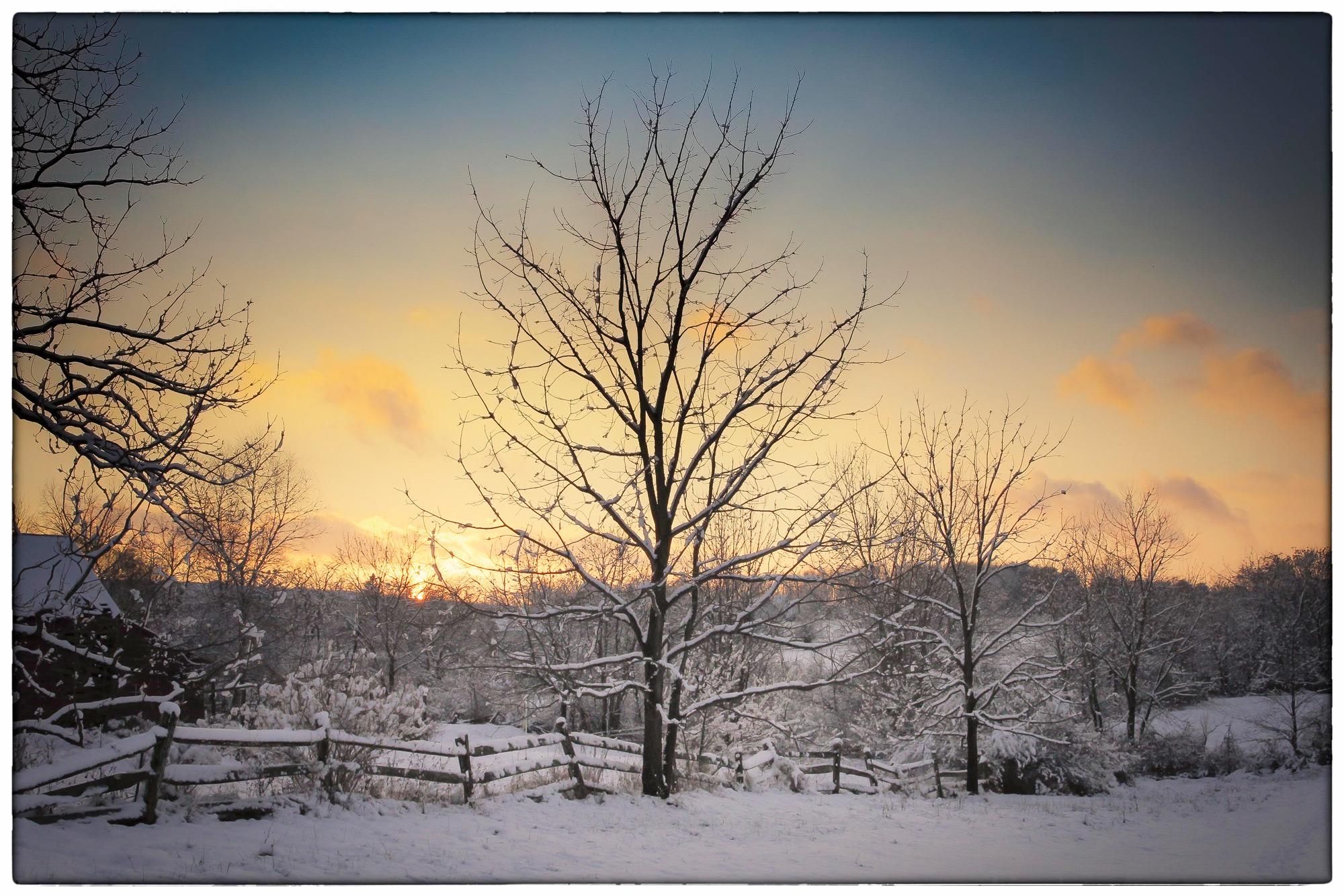 Snowy-Oldwick-1.jpg