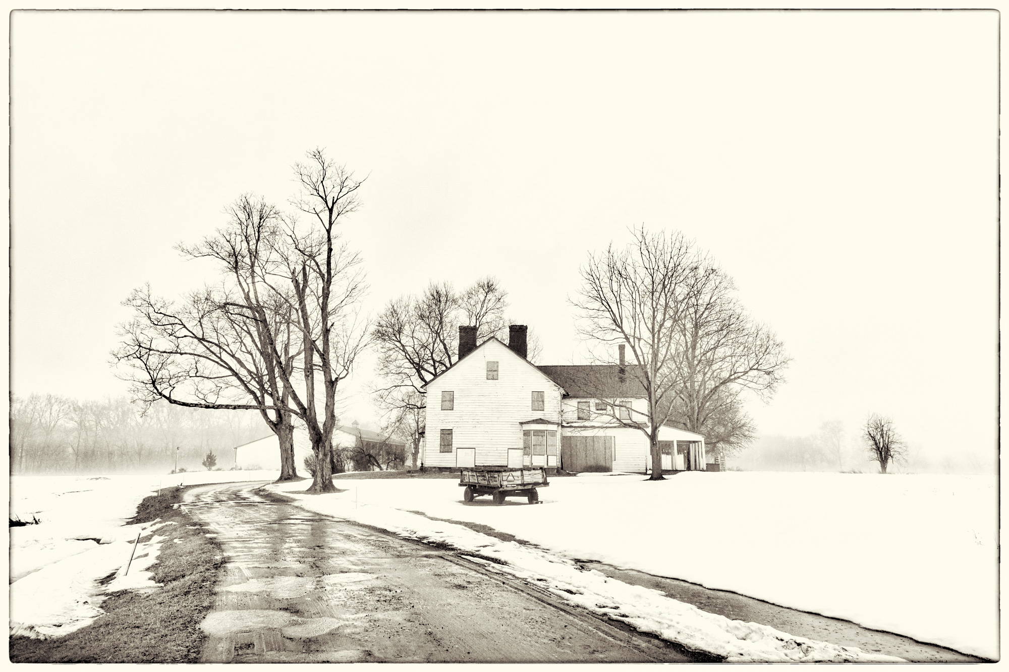 Foggy-Property-2.jpg