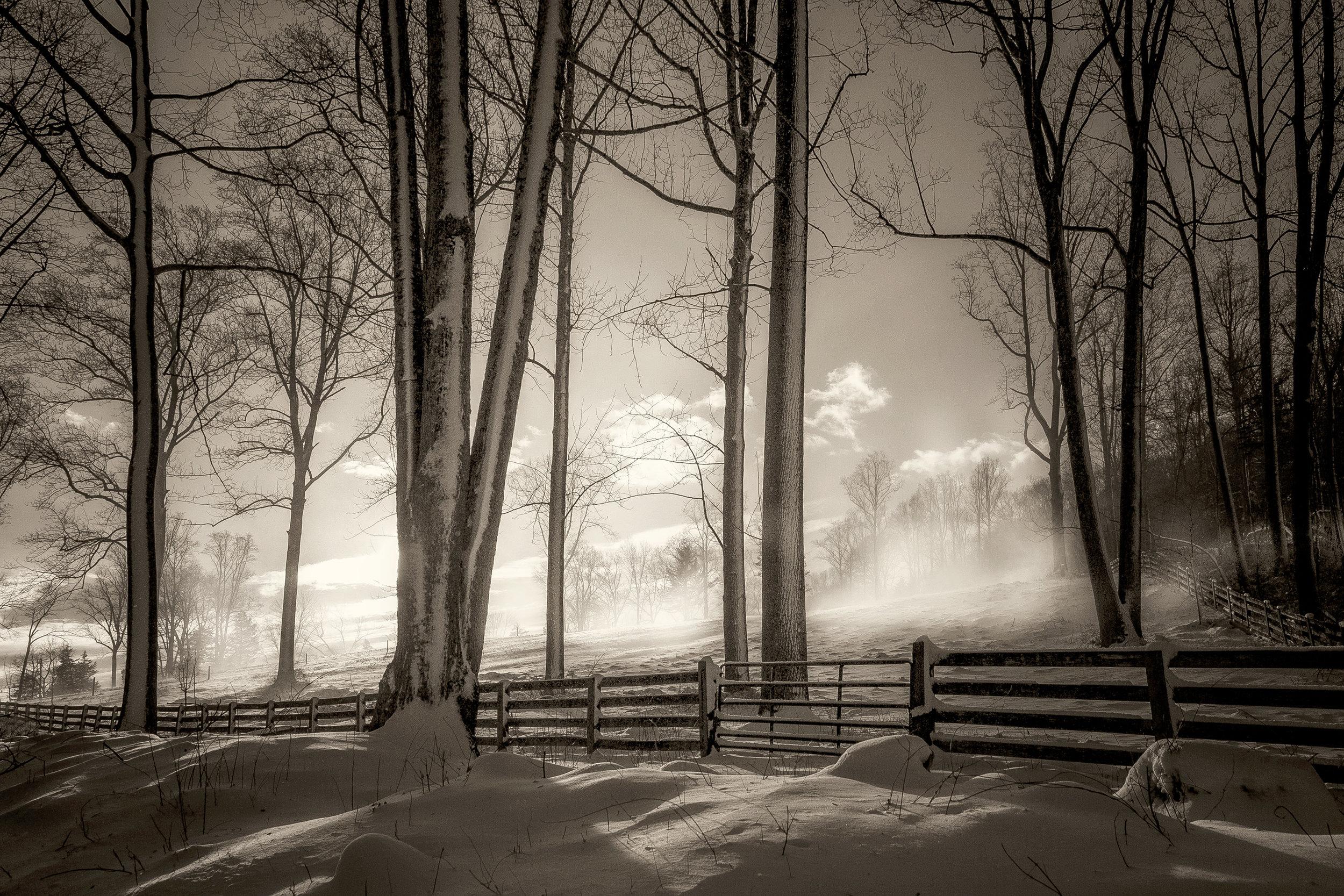 SnowGusts-3.jpg