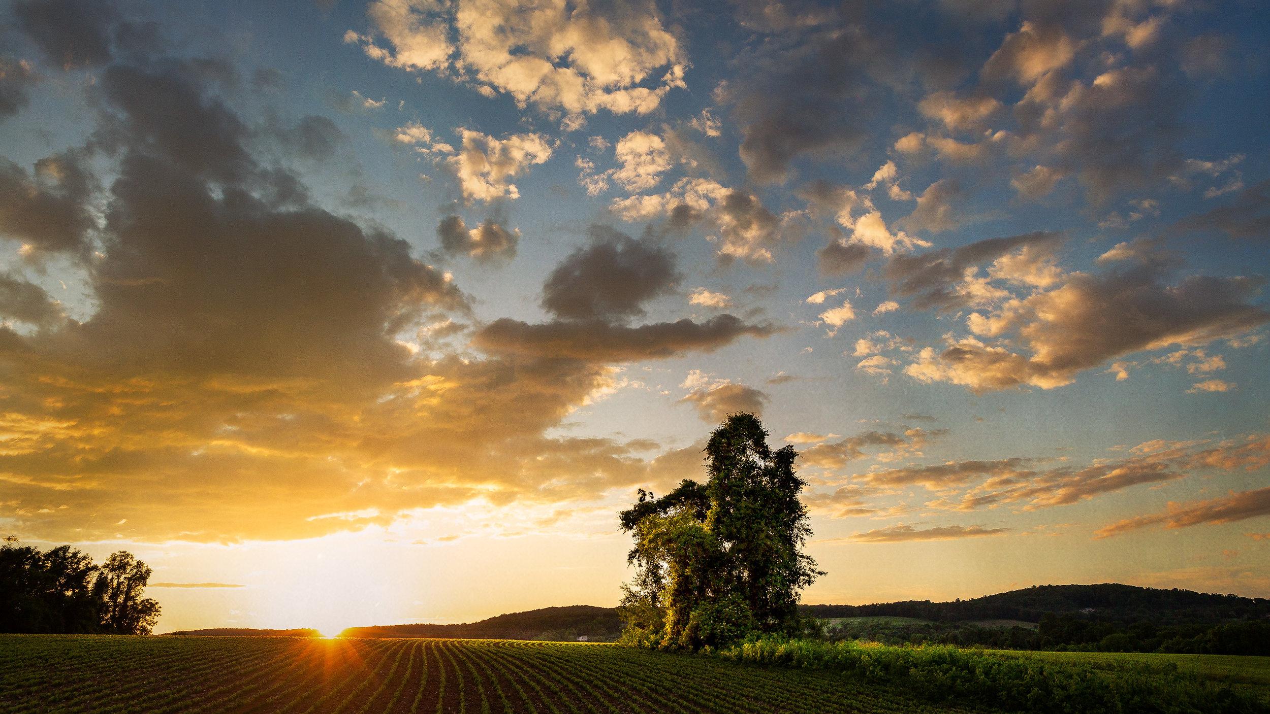 Oldwick-Sunset-3aa.jpg