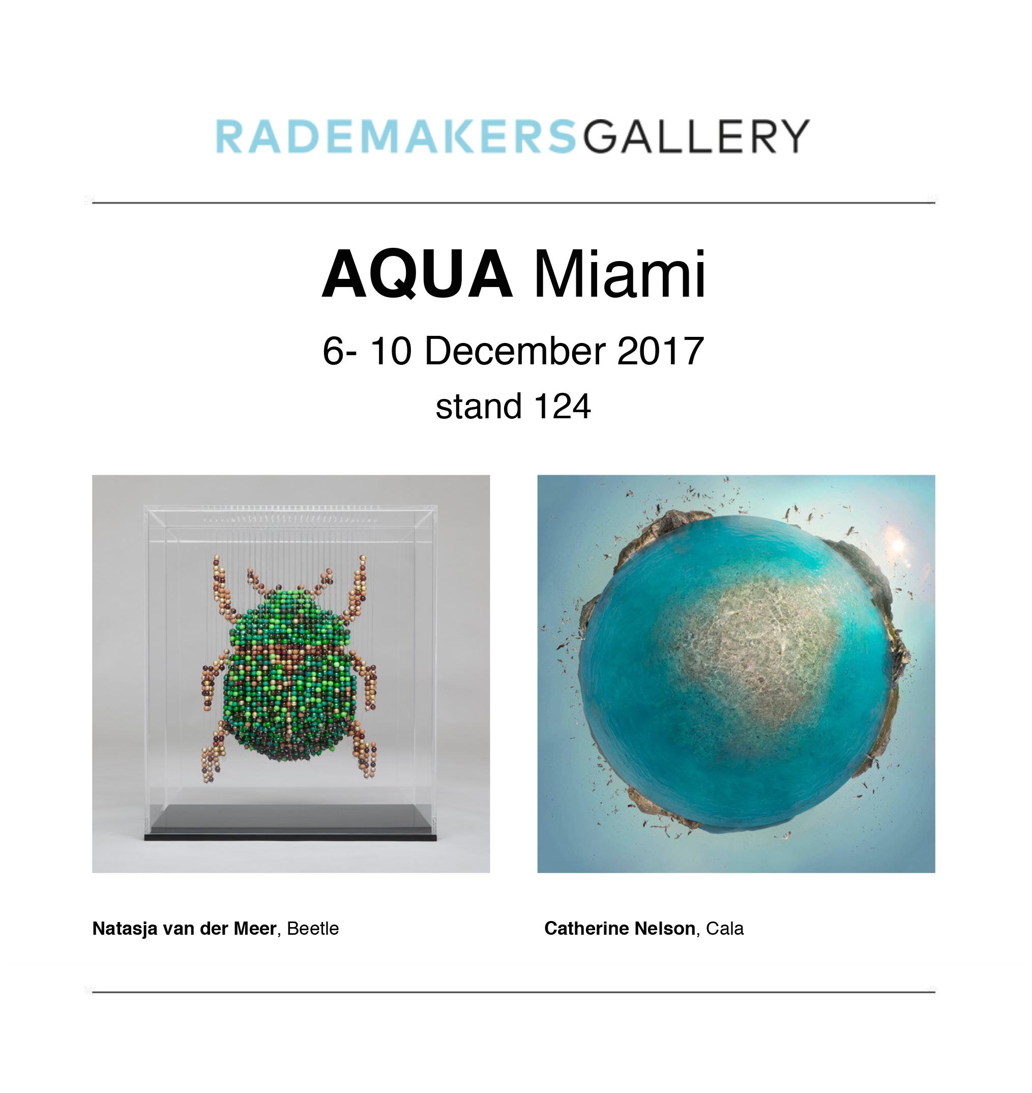 Rademakers Gallery Newsletter-2.jpg