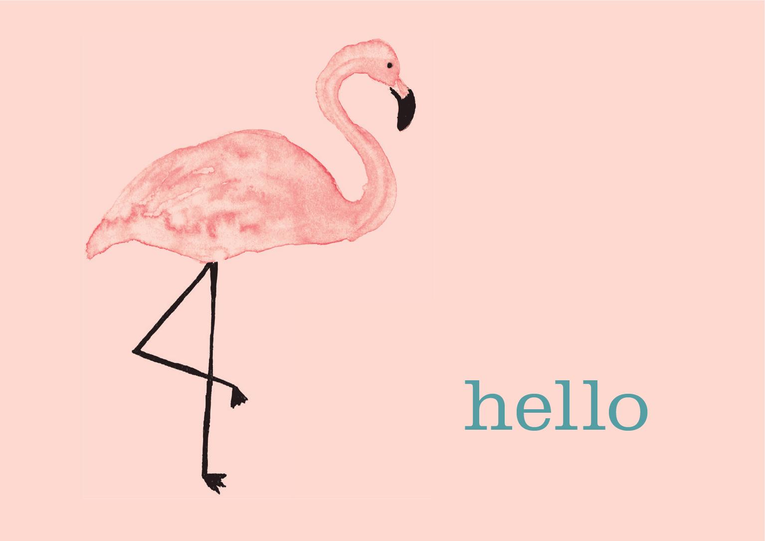 Hello_Flamingo.jpg