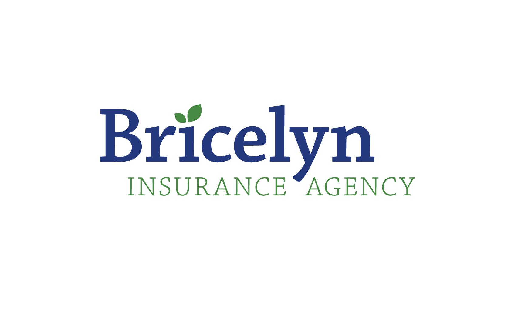 BricelynIA_Logo-01.jpg