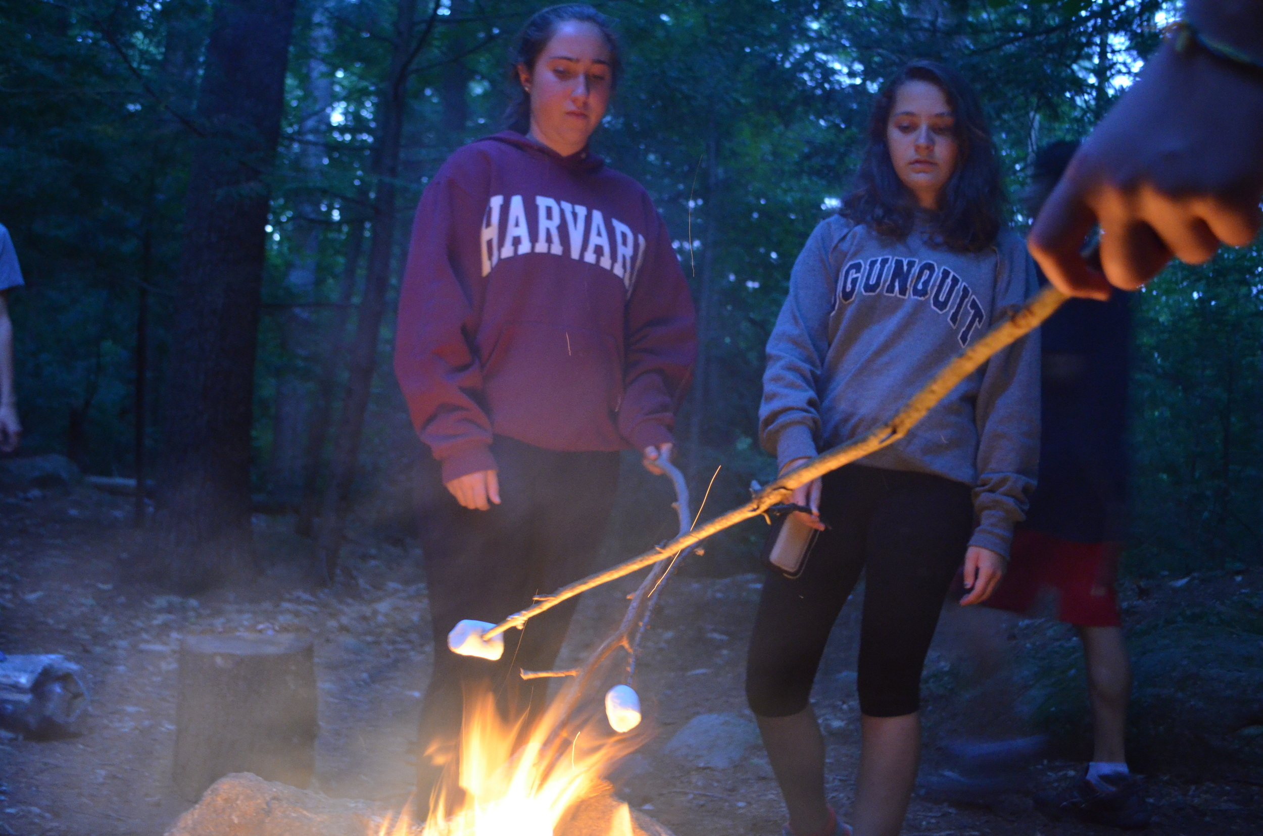 Camping Out (S'mores!)
