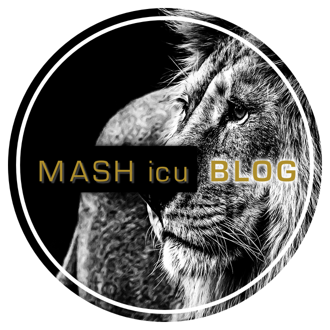 MASHblogphoto.png