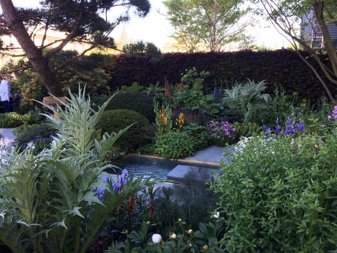 Chris Beardshaw's s show garden