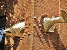 Fish art on downtown Portland, Oregon (USA) building, Photo by Bob Sallinger.