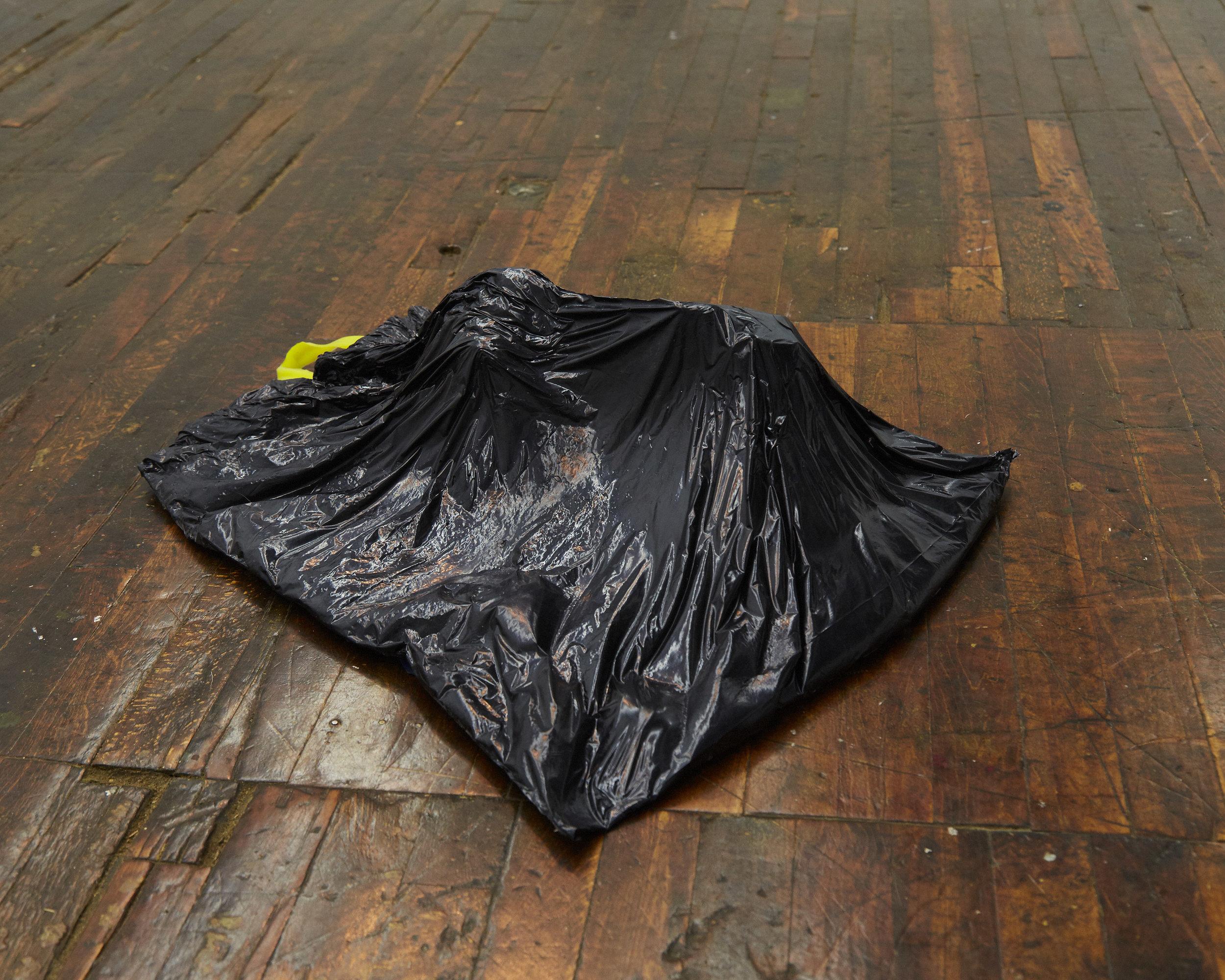 Jonathan Santoro,  From Marrow Wonder , Cast urethane plastic, cast silicone rubber, wire, urethane foam, 2017