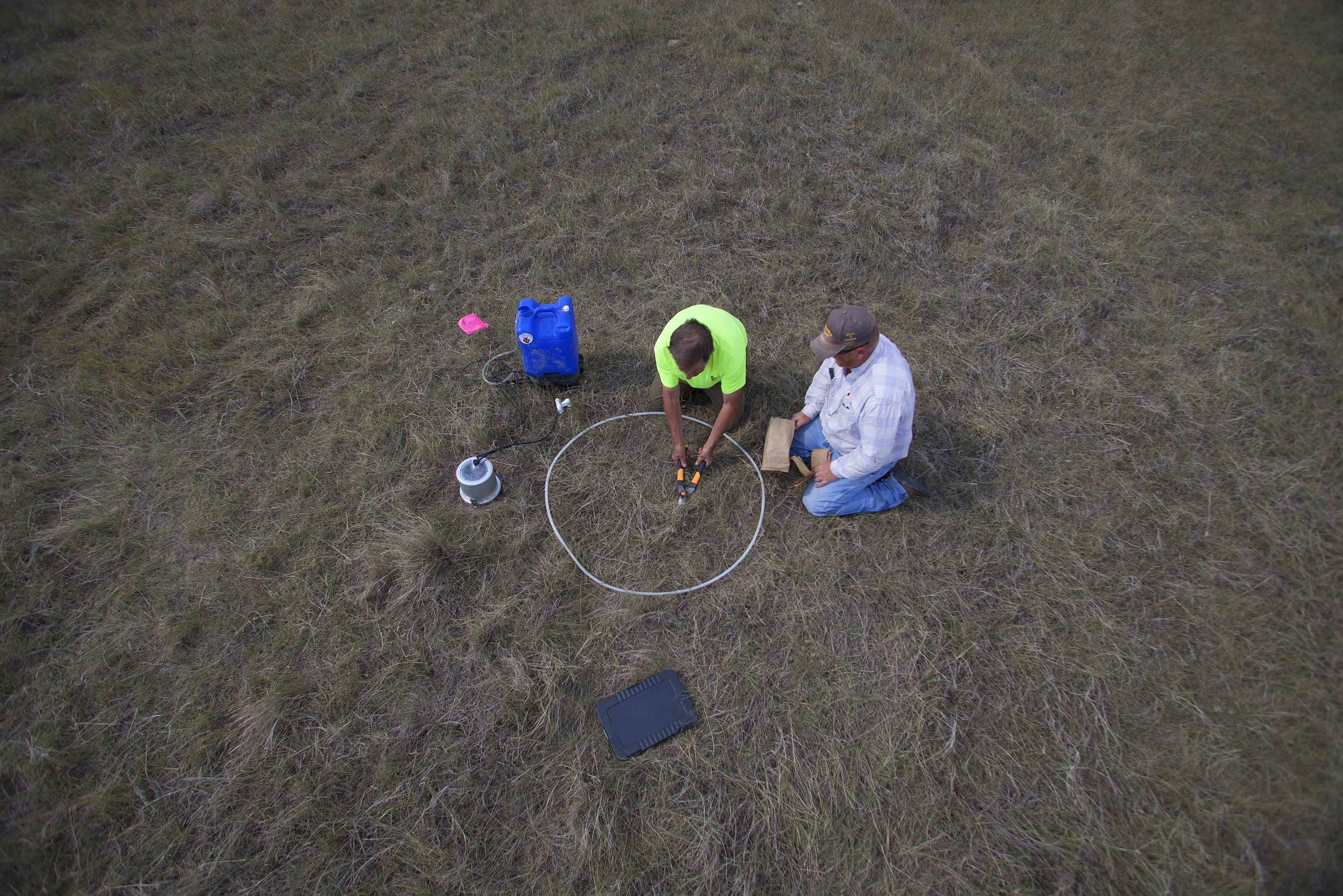 Steven Apfelbaum, left, of Applied Ecological Services, performs a biomass test on a section of pasture, with the help of 777 Bison Ranch Manager Moritz Espy. This test measures plant productivity and the health of the soil.