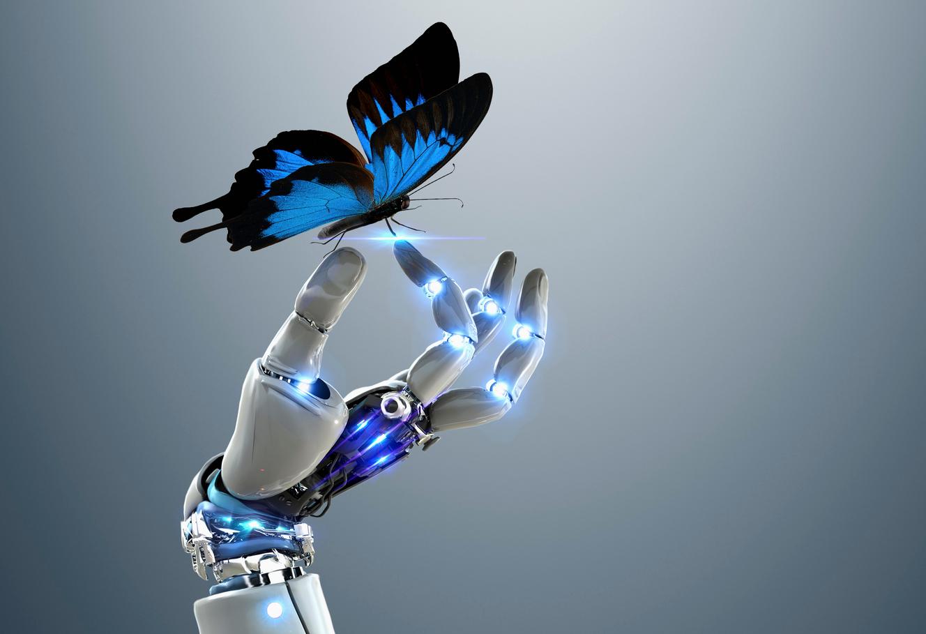butterfly_hand_useful.jpg