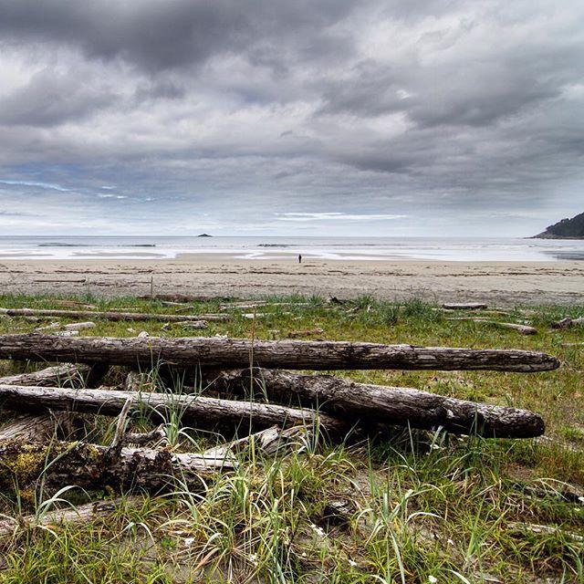 Gorgeous Sea Lion Beach.
