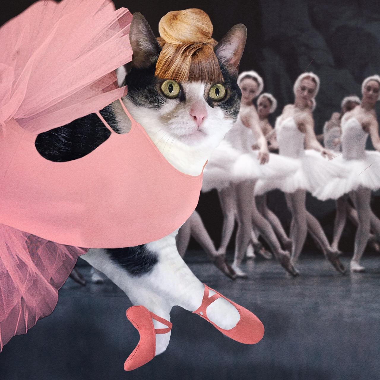 Prima Ballerina Jessica Katz, 2015