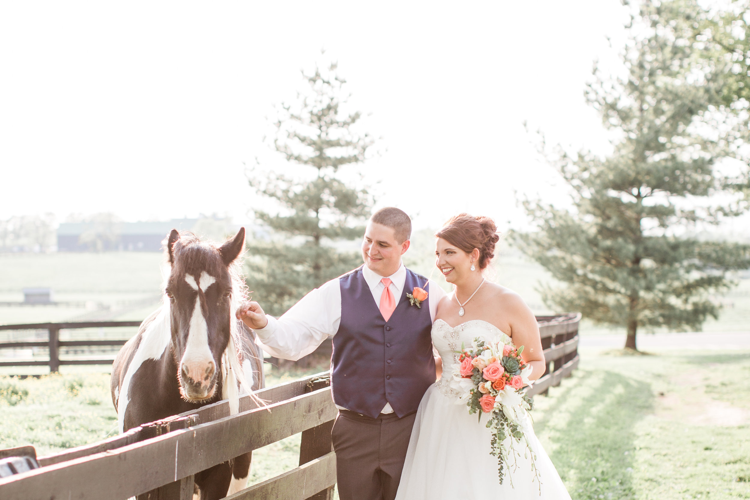 """Calling all horse fans, the Sears wedding is about to make your jaw drop!! Blake and Sarah got married May 12th at The Big Barn located in the Kentucky Horse Park. These best friends turned high school sweethearts met in Calculus and their love story is anything but boring.    Every girl dreams about getting engaged at Disney World and that's exactly what Sarah got! In March 2017, they vacationed to Orlando, Fl. and got tickets to Disney. Sarah wanted their picture together at the castle before it got dark but Blake already had a plan. He had an employee come over to capture the moment as he handed her golden Mickey ears that said, """"Will you marry me?""""    Their wedding day came together flawlessly in just two short months! The sun was out and shining early on May 12th and the horses could be seen running across the fields. Kala's Stage was hard at work glamming up the beautiful bride to be; Sarah's updo couldn't have been more perfect.    Navy, Coral, and gold swatches filled the barn at the Sears wedding. The tables were decorated with centerpieces from IKEA and Michaels. The sun caught the sparkle tulle and beaded bodice of Sarah's dress which made the whole night bright. They danced the night away in the barn surrounded by their friends and families."""