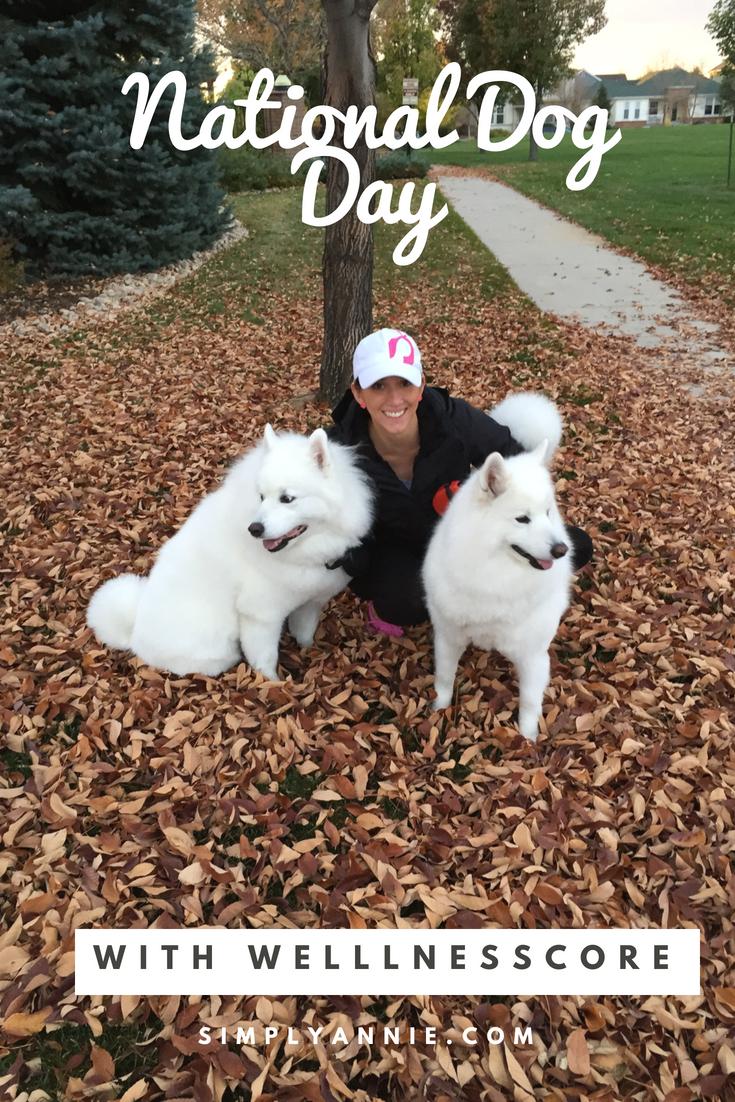 National Dog Day.jpg