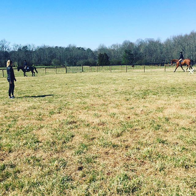 Assistant trainer @sarahkmilliren teaching lessons on this beautiful day out in our grass field!