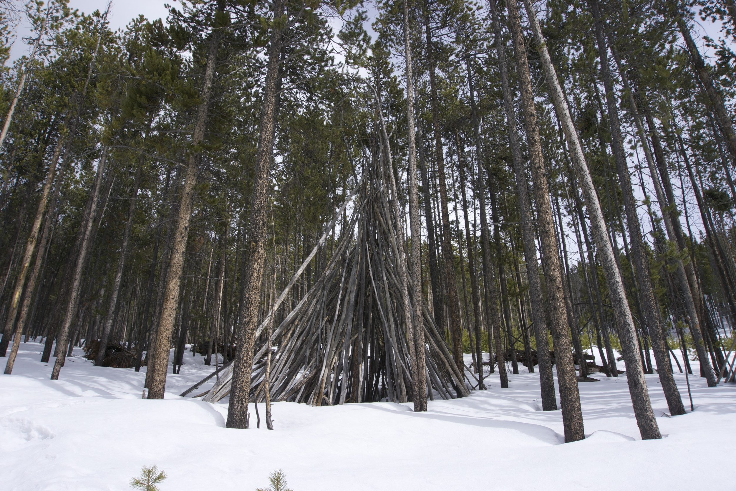 Teepee hut in Breck
