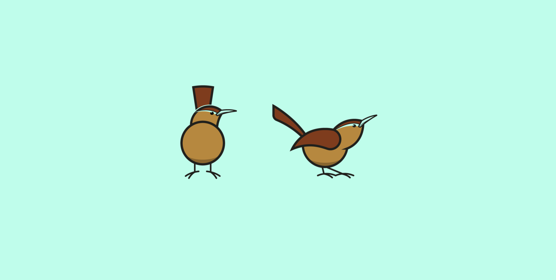 The Carolina Wren is the state bird of South Carolina.