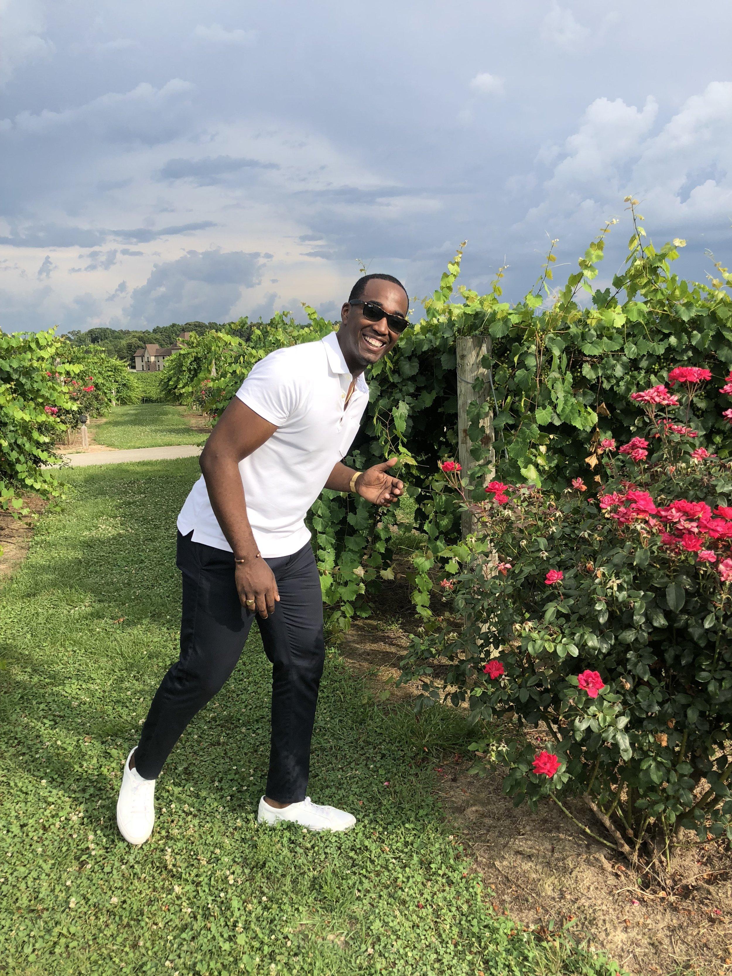 Walking through the vineyard.