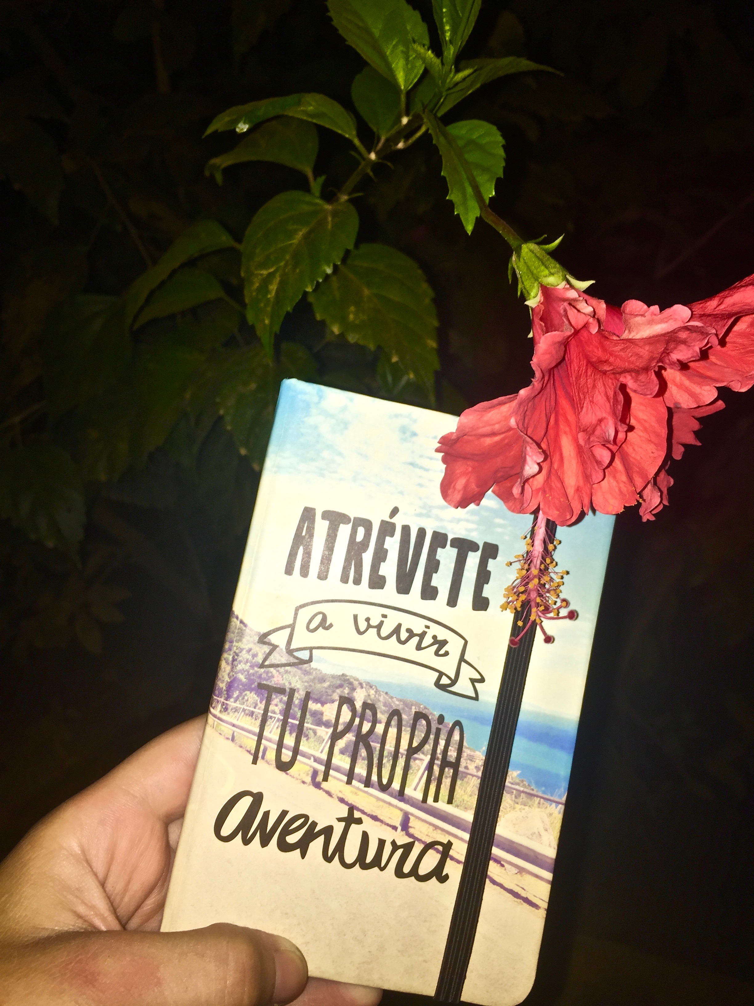 """I bought this little one in Spain, so it brings amazing memories when I write in it. """"Dare to live your own adventure"""""""