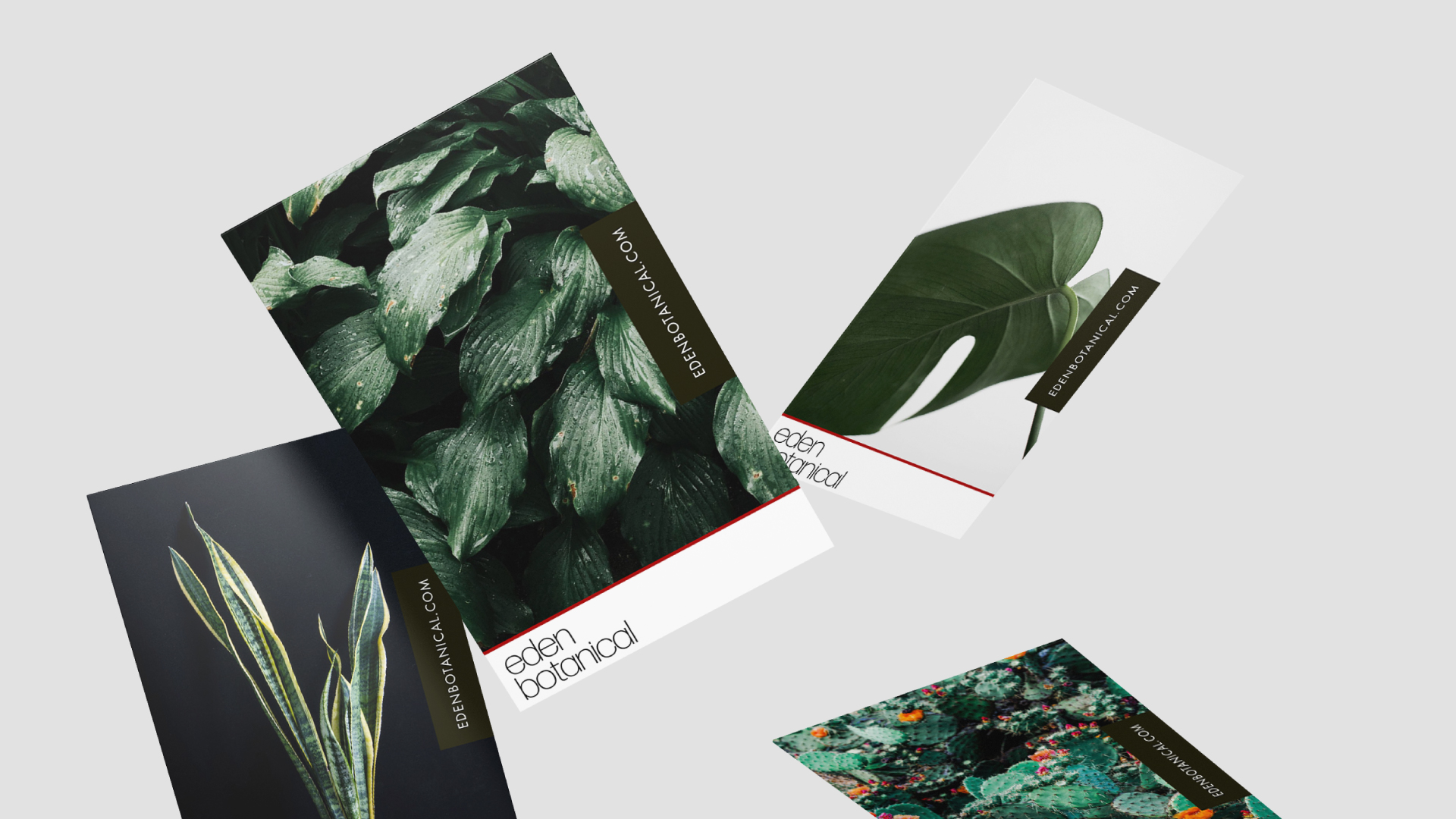 Eden-Cards1.jpg