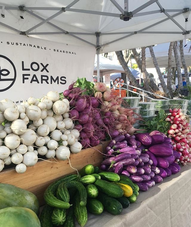 The markets are open today and we have all sorts of local goodies. Stop by and see Aj or Allie at the Delray and West Palm green markets and ask about the ferments. The are still on sale!