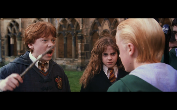 """Image from Harry Potter and the Chamber of Secrets in which Ron Weasley is confronting Draco Malfoy for calling Hermione Granger a """" filthy mudblood."""""""