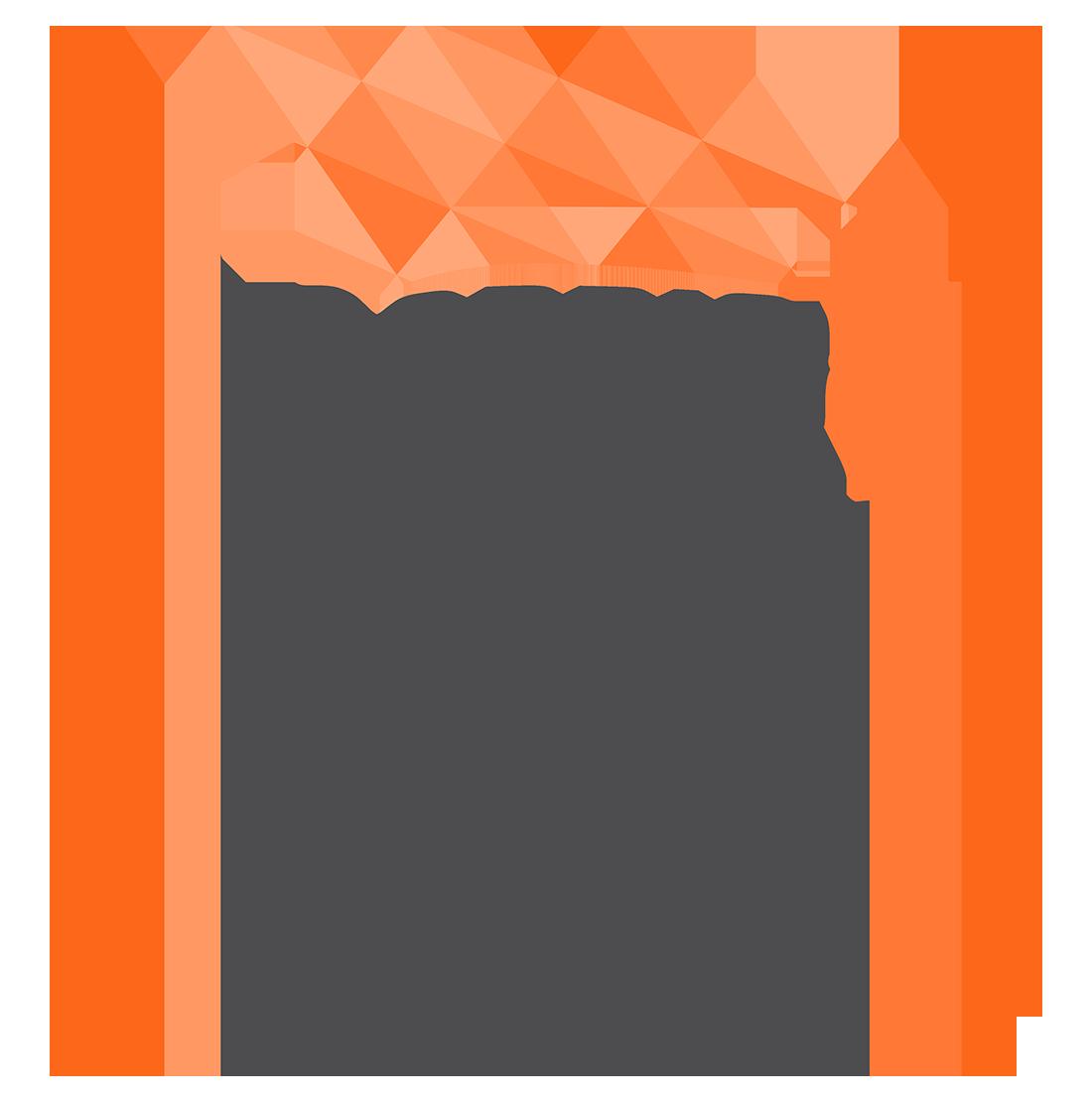BLCI logo.png